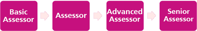 Synchro Skills Assessor progression